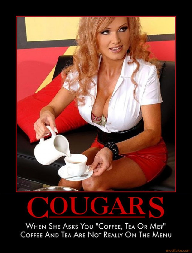 Definition of a woman cougar